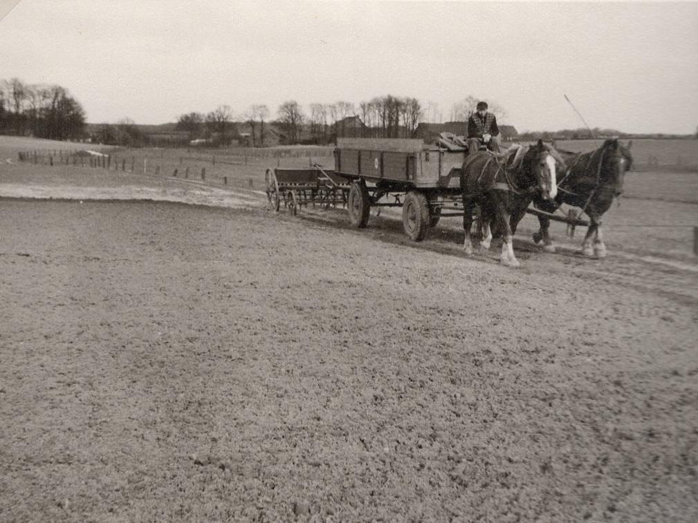 Pferdegespann mit Drillmaschine und Säwagen